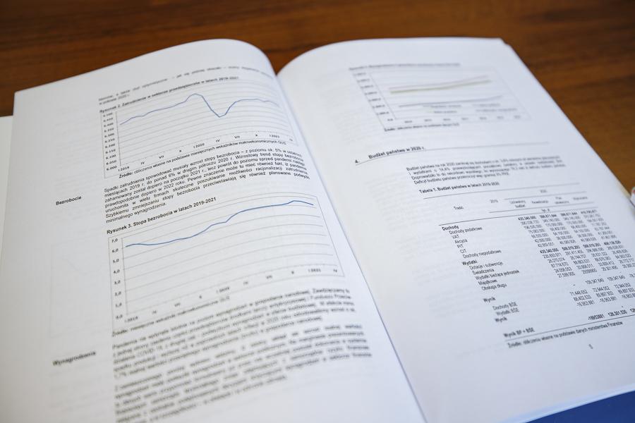 IBAF raport